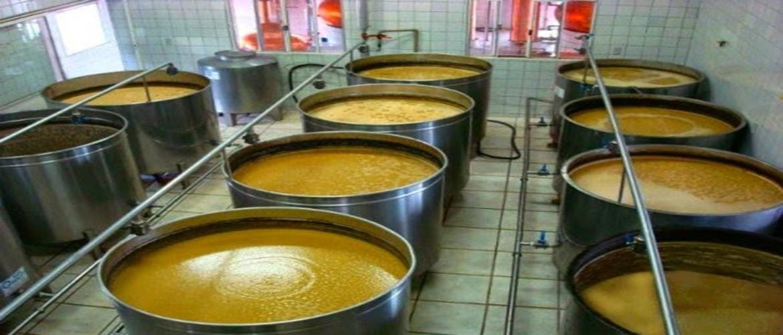 indicadores para a cachaça - fermentação